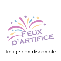 Feux d'artifice Fanatic               *NEW*