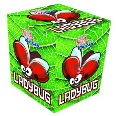 Feux d'artifice Ladybug